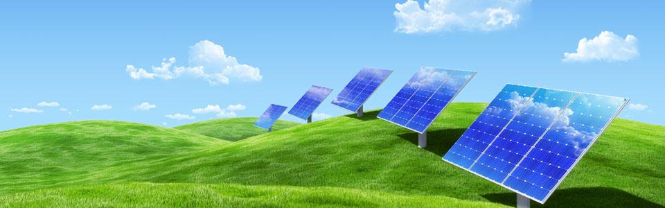天威新能源(扬州)有限公司图片